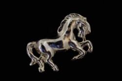 Insignia caballo